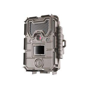 bushnell trap camera